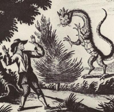 03-drago-dalla-testa-di-gatto